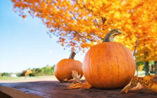 【社区活动】10月7日~10月22日活动预告