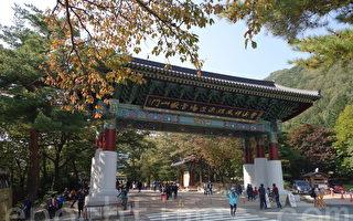 组图:韩国雪岳山秋枫揽胜