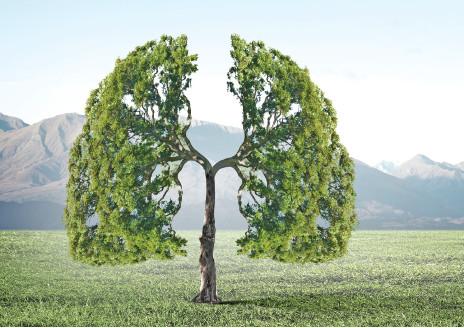 虽致命但可预防 聼专家讲解如何应对肺癌