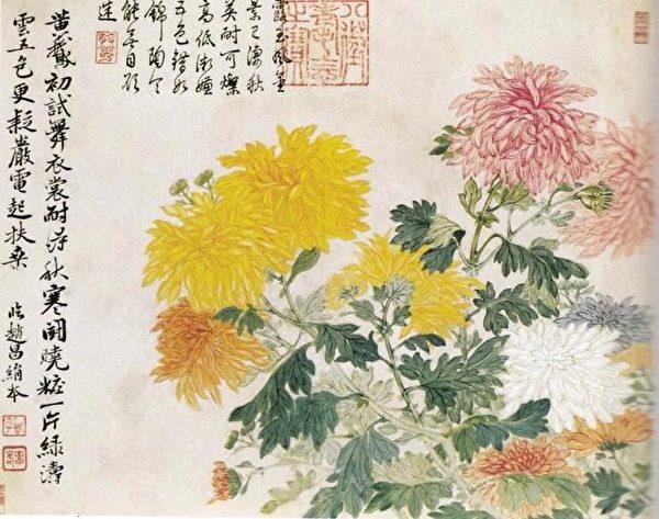 清 恽寿平《五色菊花图》故宫博物院藏 (公有领域)