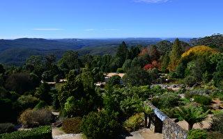悉尼皇家植物园年580万游客 财政收入3.2亿
