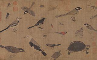 【文史】最美的画稿 黄筌《写生珍禽图卷》