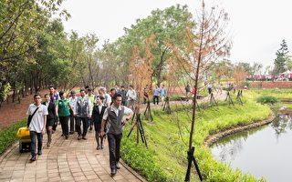 中坜区过岭森林公园竣工  打造城市绿洲