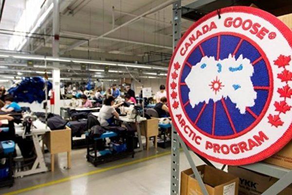 加拿大鹅被仿冒,令该公司无可奈何。图为加拿大鹅制造厂。(加通社)