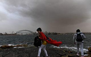 沙尘暴绵延500公里 悉尼90人哮喘病发入院