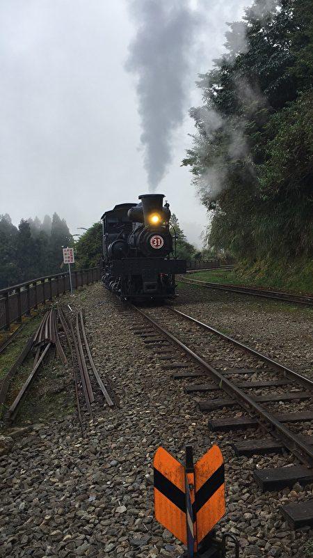 文化局副局長葉國樑特別前往阿里山拍攝31號小火車的英姿,與今日交趾陶31小火車互相襯托,對照之下更添意趣。