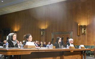 川習會前 美國會聽證 譴中共打壓宗教自由