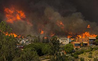 加州大火殃及好莱坞 明星豪宅一夜被焚毁