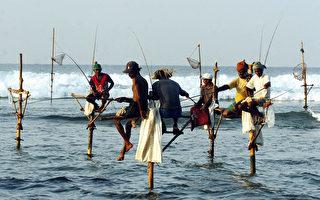 渔夫坐在海中木杆上垂钓 斯里兰卡独特传统