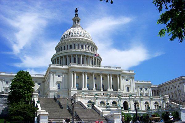 2020年美國參議院選舉正展開激烈角逐