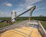 中国农产品期货持续上涨 大豆涨幅令人咋舌