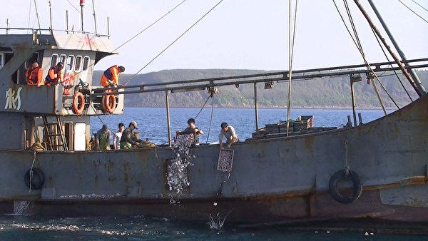 大陸漁船頻越界 查扣並加強非洲豬瘟檢疫