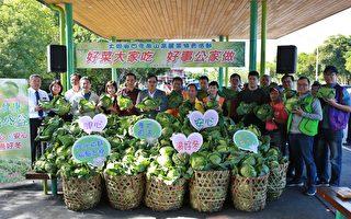 宜兰县政府举办四季南山高丽菜特卖会