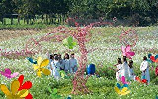 桃園花彩節超過百萬人次  創造「幸福經濟學」