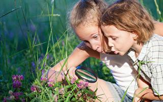 孩子户外学习裨益多