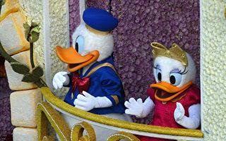 遊客遺失的唐老鴨玩偶 日本博物館保管30年