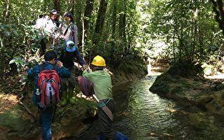 抢救濒危植物  台越联合植物保育研究中心启动