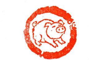 篆刻欣赏:己亥年印章 祝朋友猪年诸事安康