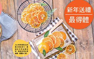 济州岛极品柑橘片 新年送礼最得体
