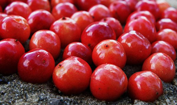 蔓越莓也有高含量的生物黄酮,有清除自由基的作用。