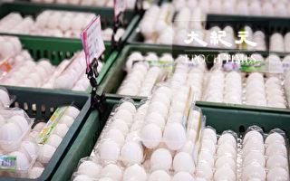 鸡蛋价贵还买不到?农委会:年节短期现象