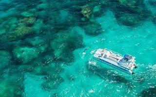 西澳老鼠島海底探索  揭開珊瑚神秘面紗