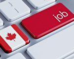 2018年12月,加拿大新增就業人數淨值為9300人,失業率維持在43年低點,達到5.6%。(Shutterstock)