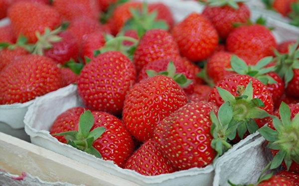 草莓中的果膠屬水溶性纖維,能促進腸胃蠕動,幫助有害毒素隨糞便排出體外。