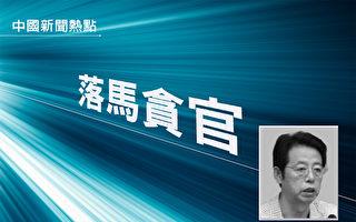 陕西省原政法委副书记 吴新成被双开