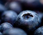 麥得飲食特別強調需多攝取「延緩大腦老化或腦神經退化」的食材,包括莓果類食物。