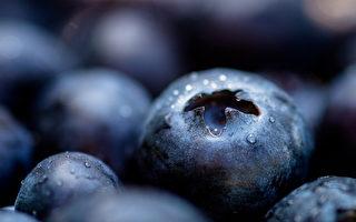 """麦得饮食特别强调需多摄取""""延缓大脑老化或脑神经退化""""的食材,包括莓果类食物。"""