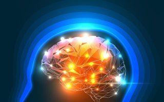 新光控神经元可关闭大脑痛感