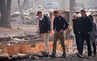 川普发推促加州加强森林管理