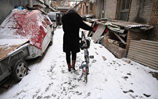 华北等北方地区将现今冬以来范围最大、强度最强的一次降雪。图为2019年2月12日的北京。(Photo by GREG BAKER / AFP)