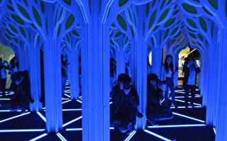 《鏡子迷宮》展 體驗大自然的數學妙