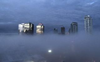 2019年2月20日早上,本那比市区出现难得一见的雾景。(大纪元)