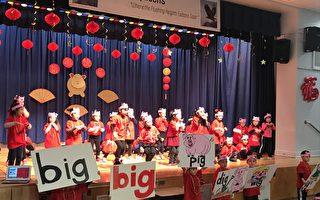 双语生5年级看懂中文报纸  163小学再添中英学前班