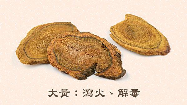 大面積的燒燙傷,第一時間可直接用大黃水浸泡。大黃可去除火毒。