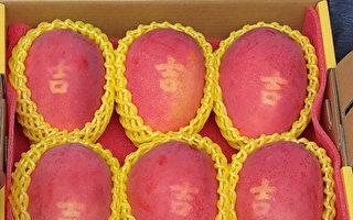 台果農有創意 芒果種出來有吉字 買氣超旺