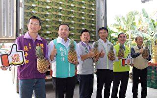 金鑽鳳梨外銷破萬噸 外銷平台確保品質