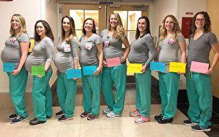 緬因州醫療中心的9名護士同時懷孕。其中8人舉著寫有預產期的標牌合影。(Maine Medical Center提供)
