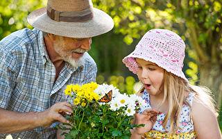 祖父母可以教给孙辈们的七件事