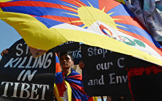 來自世界各地的支持者聚集西藏流亡政府所在地、印度北部山區的達蘭薩拉舉行紀念活動。圖為一名抗議者和身邊的停止殺戮旗幟。(ARUN SANKAR/AFP/Getty Images)