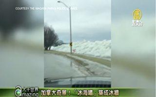 """加拿大奇景!""""冰海啸""""筑成冰墙"""