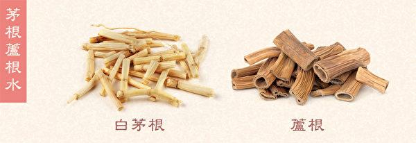 口乾食療之:茅根蘆根水,口味相當不錯,對口乾很有幫助。