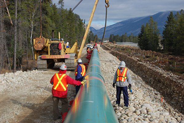 卑省政府的诉讼要求上诉法院判决,省政府是否对通过其领土的石油运输拥有管辖权,并限制从阿尔伯塔省运输石油。(加通社)