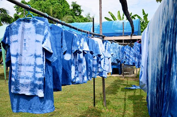 蓝印花布衣。(shutterstock)