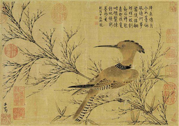 元 赵孟頫《幽篁戴胜图》。(公有领域)