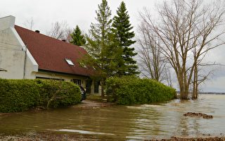 加国东部居民应对历史性洪水 军人加入救援