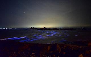 台灣馬祖藍眼淚+方塊海 變成格子藍驚豔